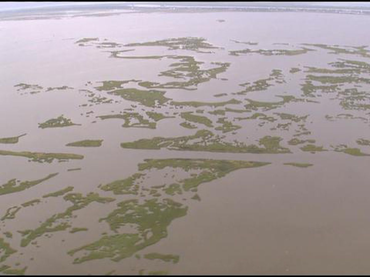 New Orleans sues oil, gas firms over coastal erosion