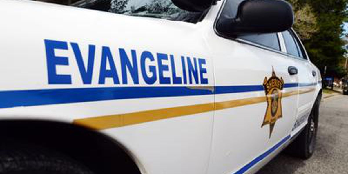 Human remains found during search of missing Evangeline Parish boy