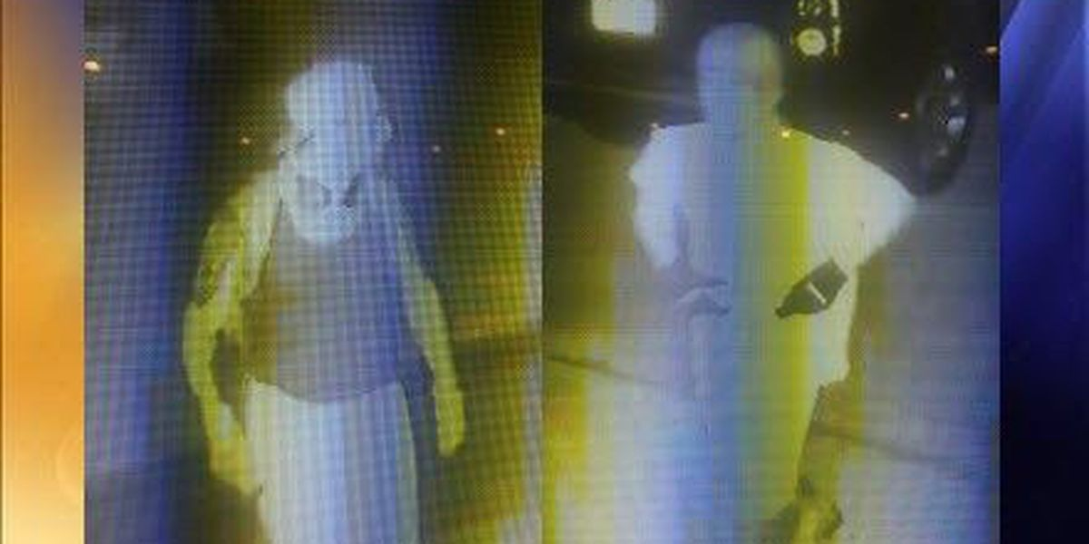 PPSO: Pair wanted for multiple car burglaries