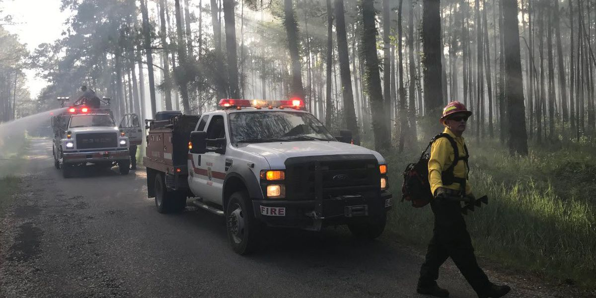 Fire at Big Branch Marsh National Wildlife Refuge 10 percent contained