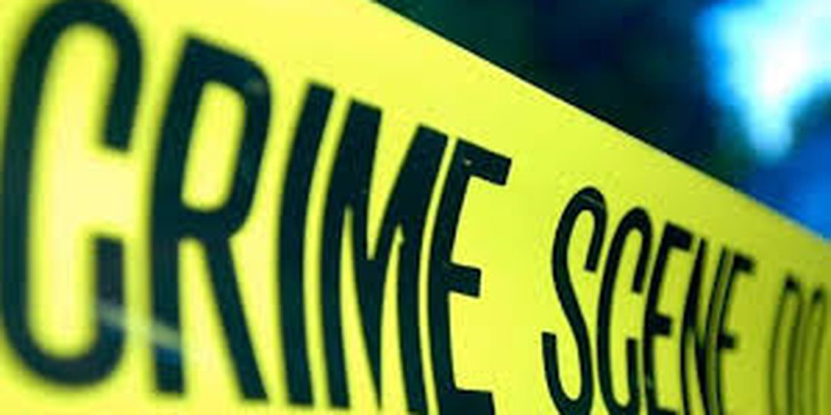 Two killed, one injured in Harvey shooting