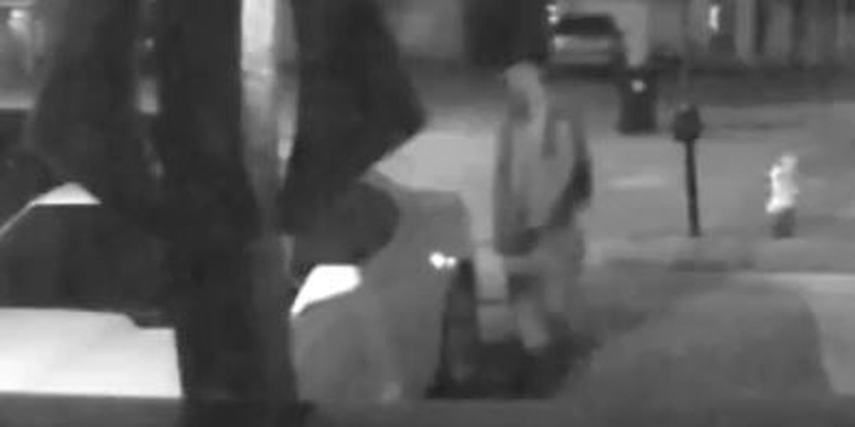 Suspects sought in string of vehicle burglaries in Algiers