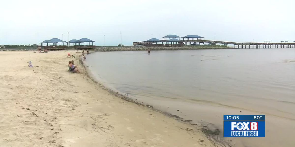 Beach-goers say not enough being done to warn of toxic algae