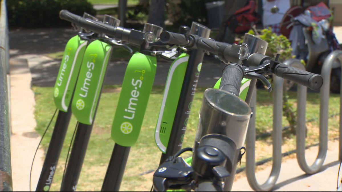 City halts electric scooter pilot program amid safety concerns