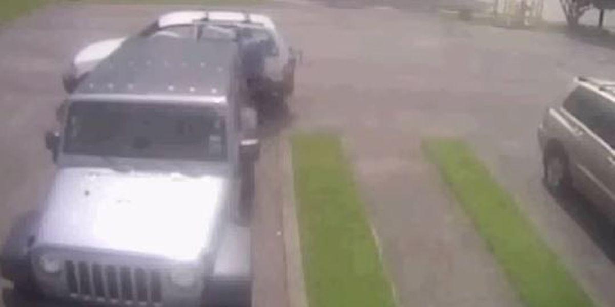 NOPD seeks Algiers tire thief