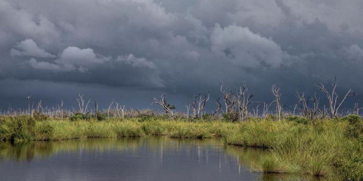 U.S. judge tosses coastal damage suit against oil companies