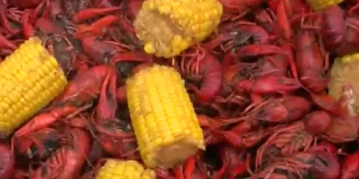 '1 shot, 1 pound': NOLA officials partner with non-profit to give free crawfish to those that get vaccinated
