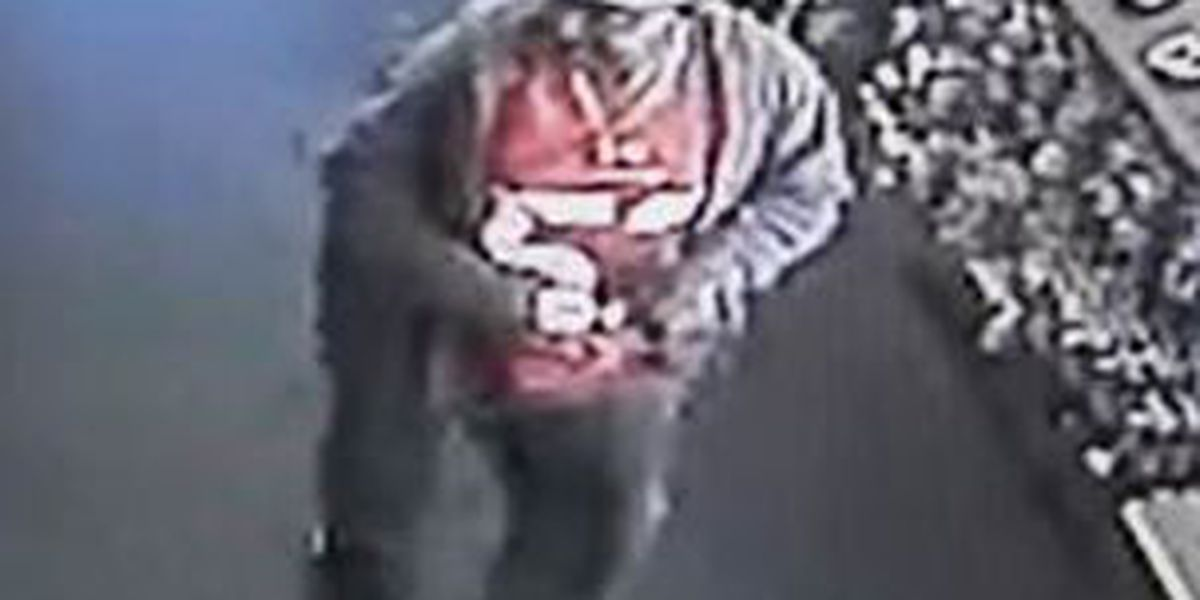 police need help finding a Canal Street purse thief