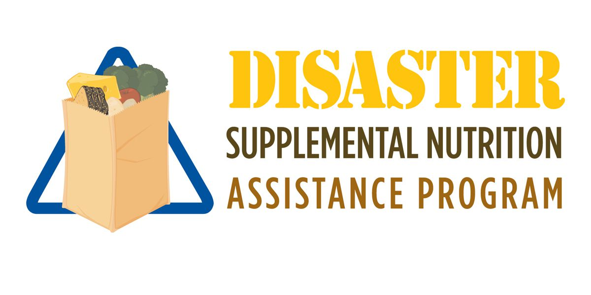 Gov. Edwards advises residents affected by Hurricane Laura to preregister for DSNAP benefits