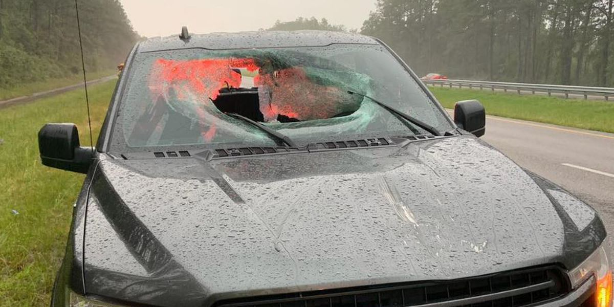 IMAGES: Lightning strike sends part of Florida highway through truck windshield