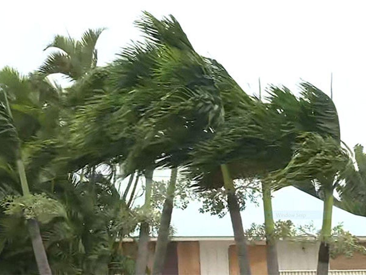20 named storms predicted for 2020 hurricane season