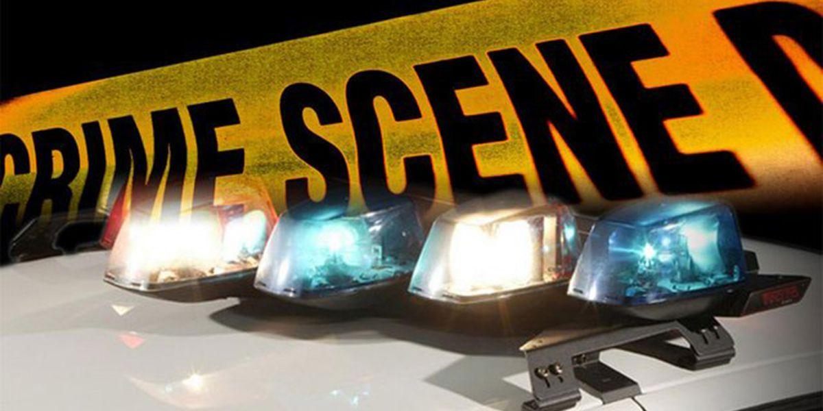 JPSO: Man shot and killed in Harvey; suspect arrested