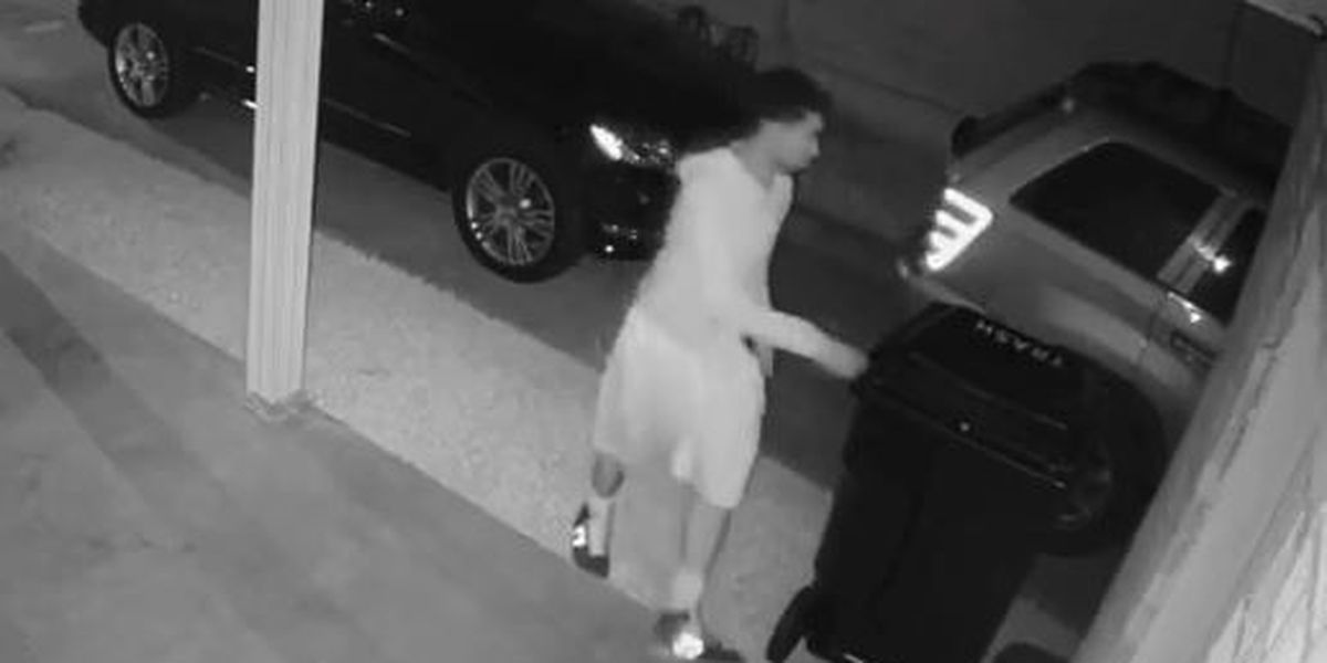 VIDEO: Criminals in Lakeview damage home during SUV theft