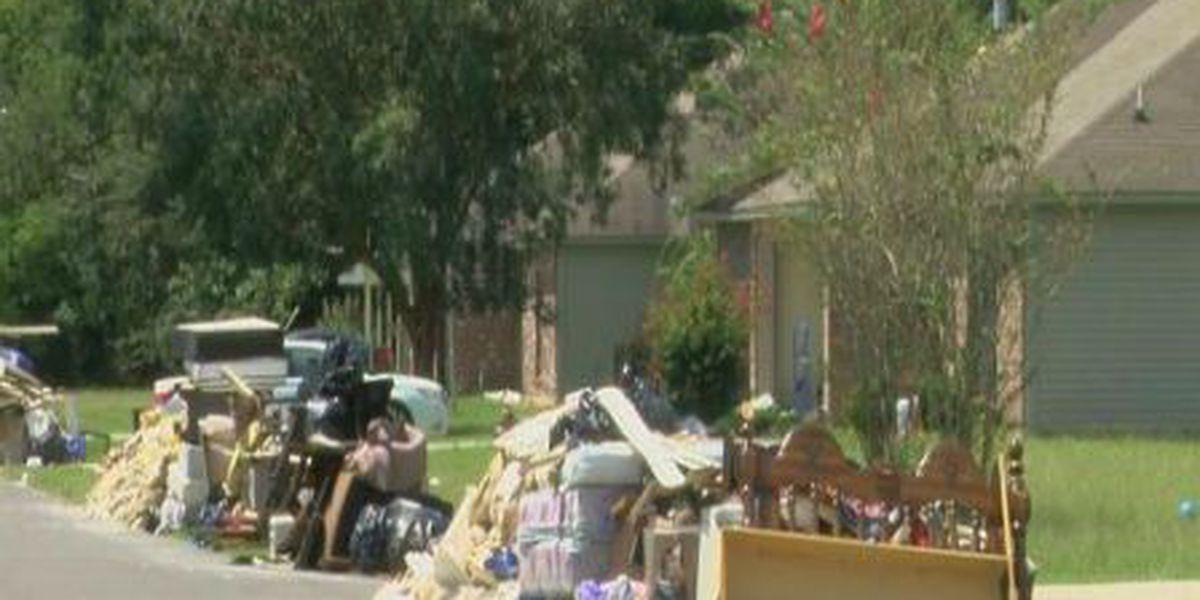 Tangipahoa Parish debris collection enters phase 3