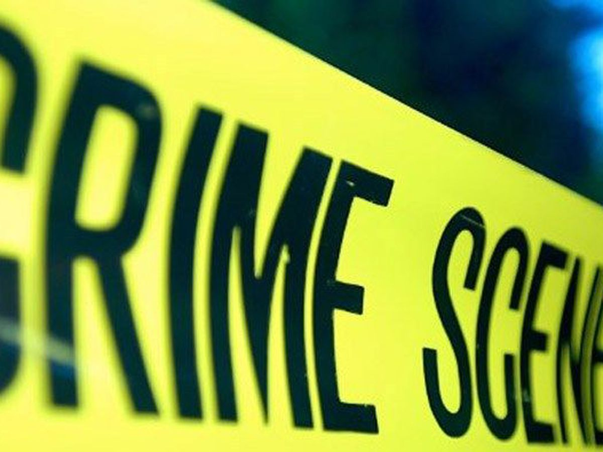 East Feliciana Sheriff's Office investigating dog death