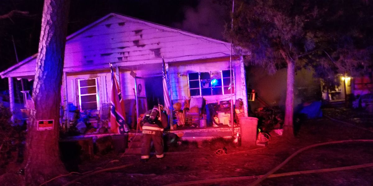 Dogs die in Pearl River house fire