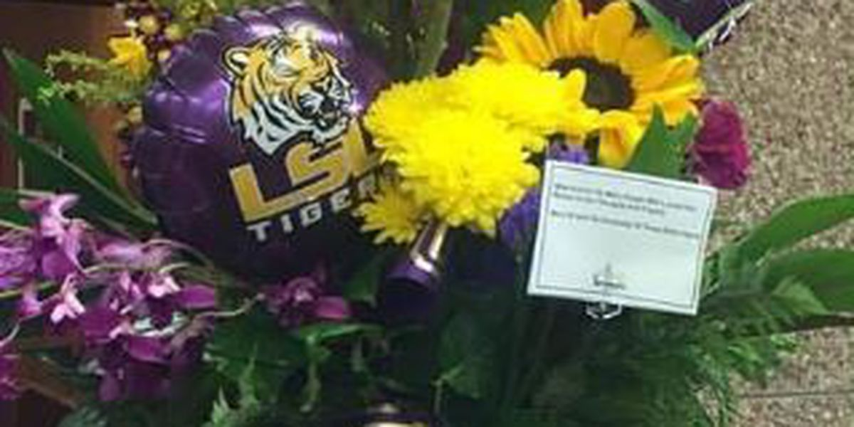 MIKE VI gets cards, flowers from UT's Bevo XV