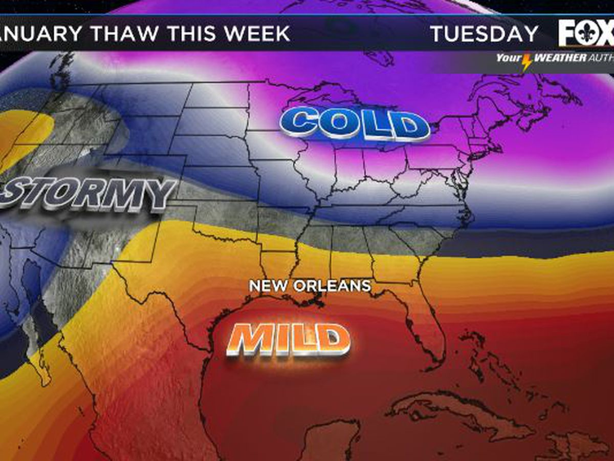 Mild winter weather continues