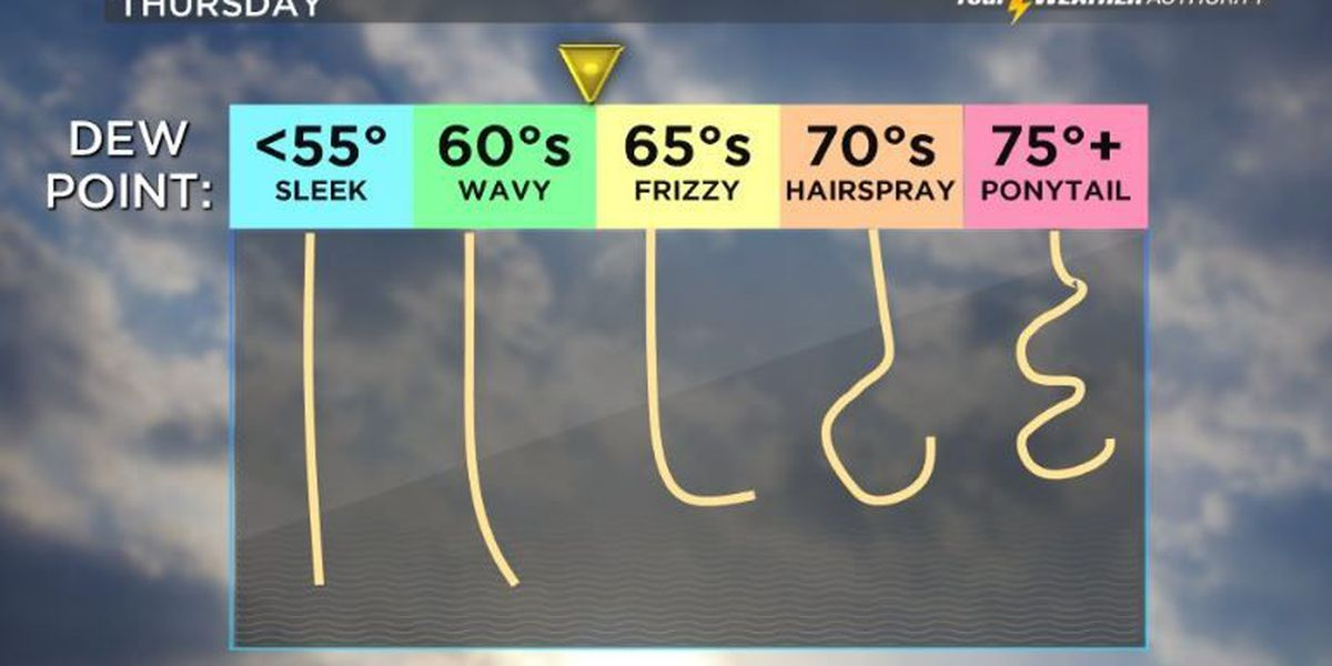 Your Weather Authority: Gradual warming through the end of the week