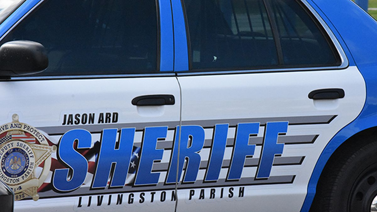 Two girls abducted at gunpoint in Livingston Parish; suspect in custody