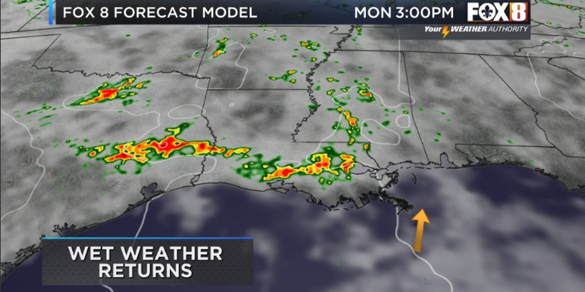 Nicondra: Sunny and nice for the weekend, but storms return for the work week