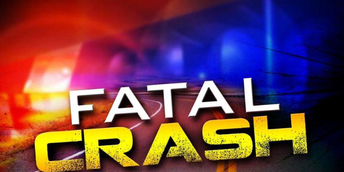 Shreveport woman killed in Metairie car crash