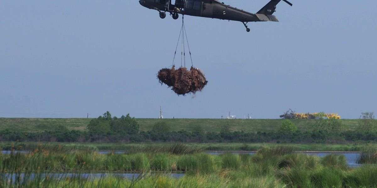 Louisiana National Guard delivers recycled Christmas trees to the marsh