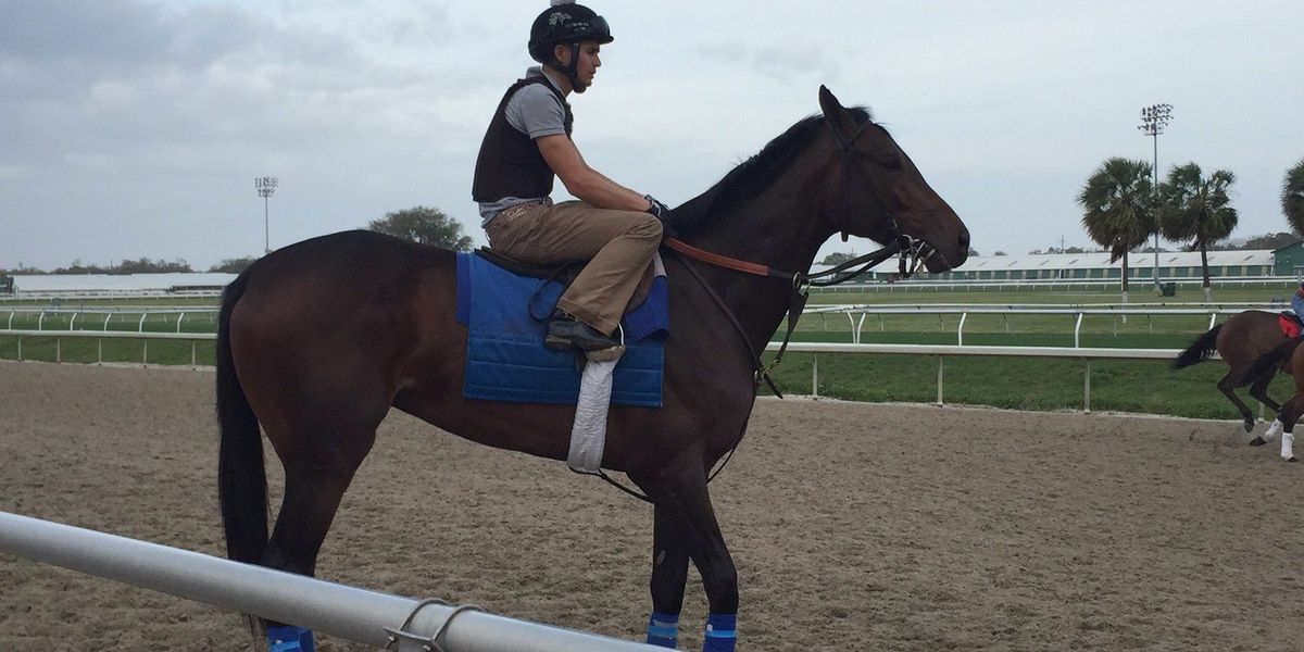 The Benson's horses will face stiff competition at Kentucky Derby