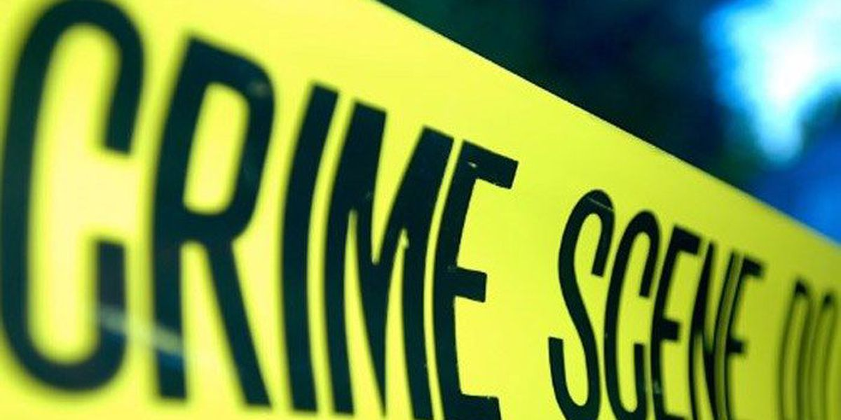 Man shot and killed in Algiers