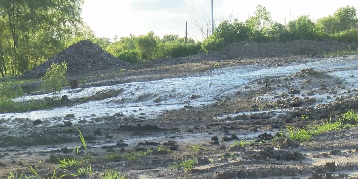 FOX 8 Defenders: Illegal dumping issues continue in New Orleans East, prompting drainage concerns