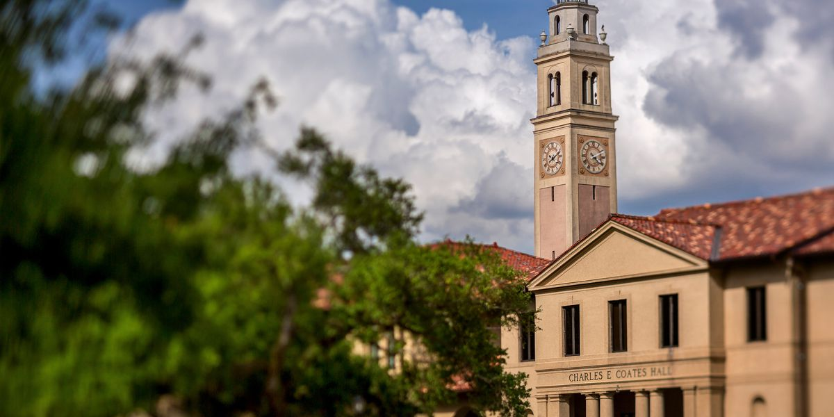 Four LSU employees face termination for spurning state law