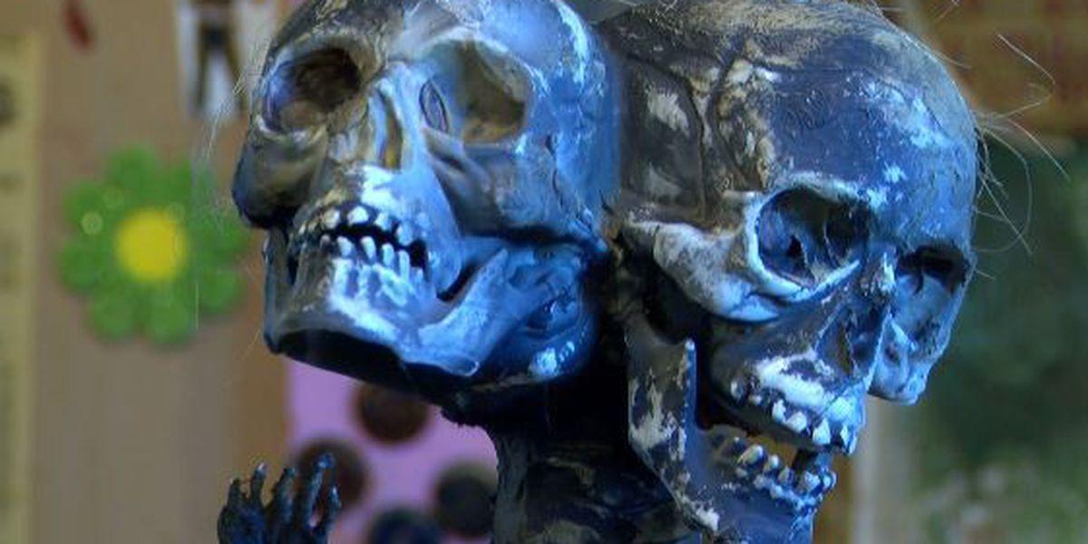 Freak 'Baby' stolen from Abita Mystery House