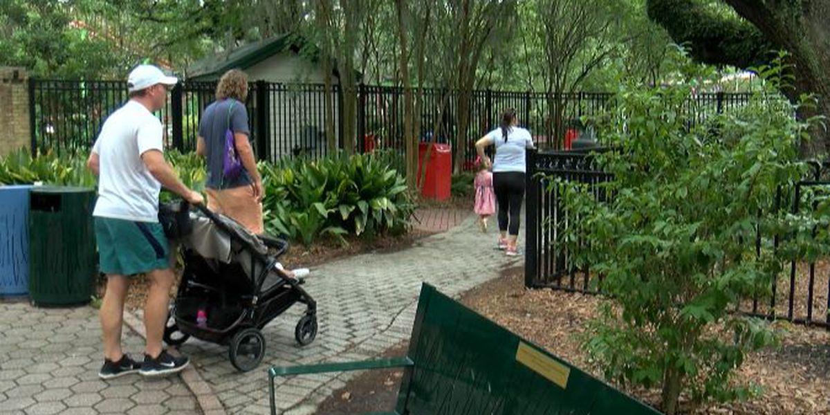 "City Park attractions open on first day of ""Phase One"""