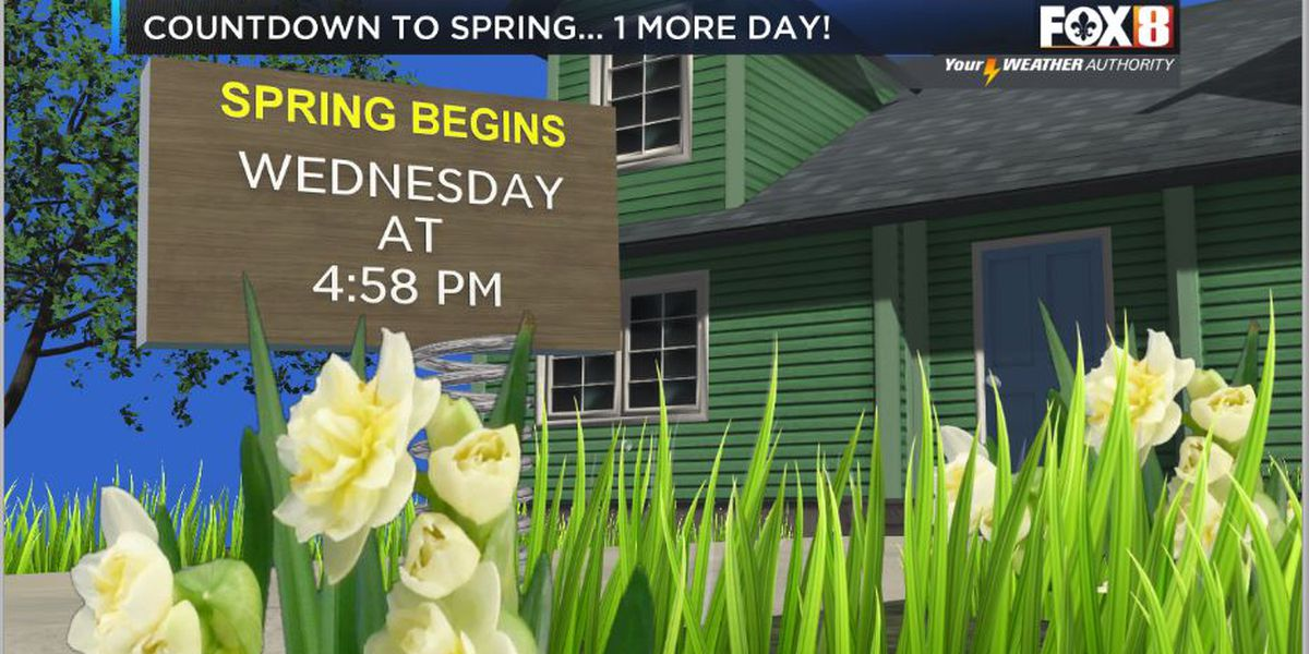 Nicondra: Sunny and nice for the official start to Spring
