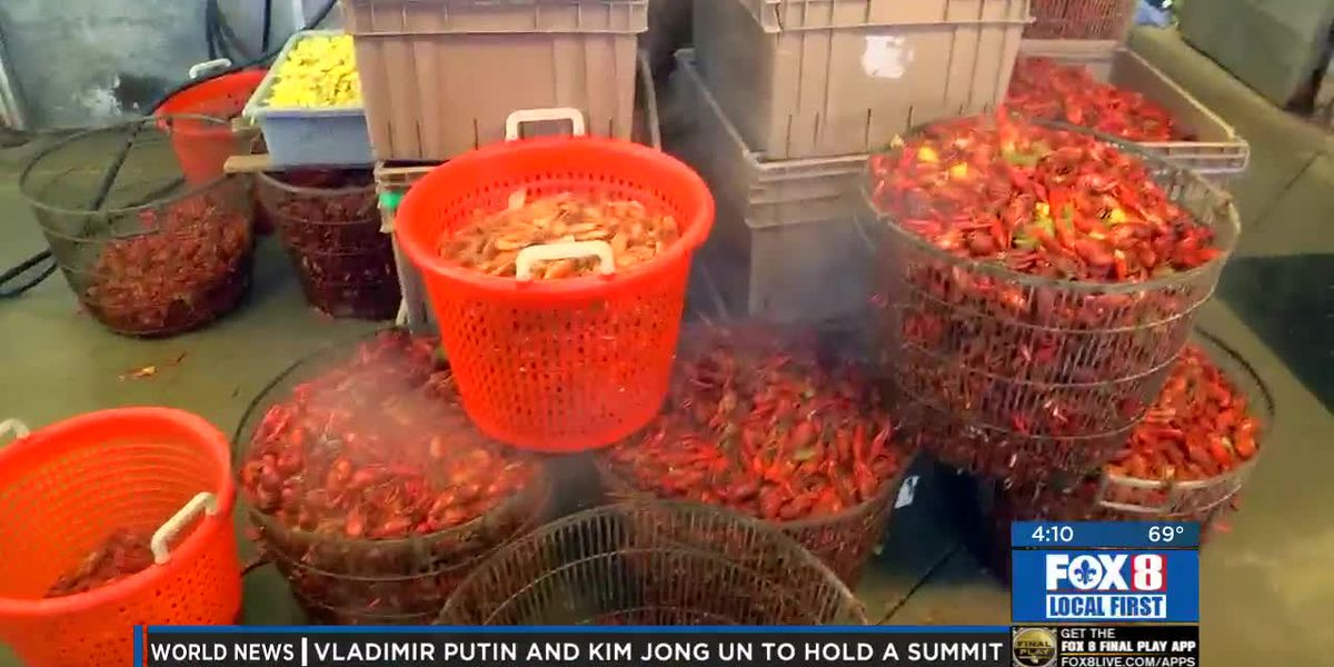 Good Friday crawfish sales