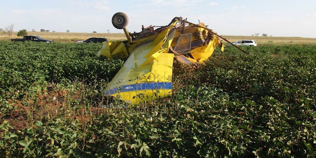 Gender-reveal stunt caused small plane crash, report says