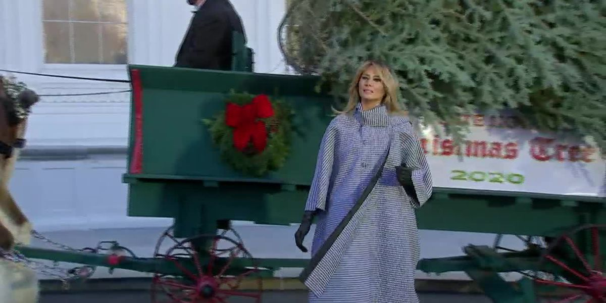 First lady welcomes White House Christmas tree