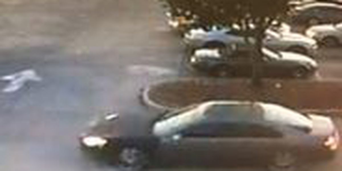 NOPD looking for a car used in an Elysian Fields Ave. armed robbery