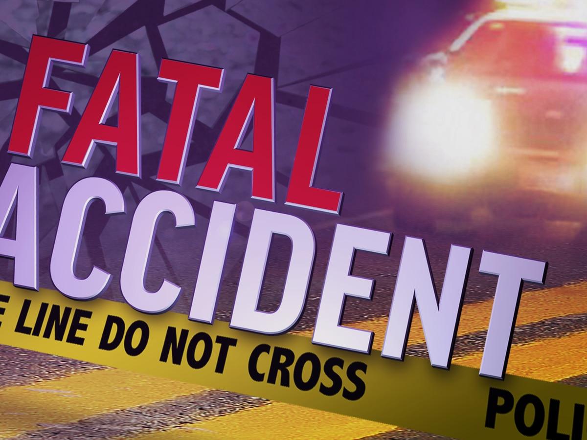 Police say lack of seat belt use led to fatal crash in St. Bernard Parish