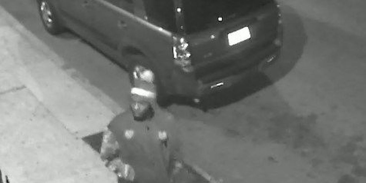Suspect wanted for auto burglary