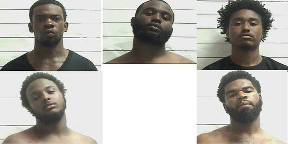 5 charged with gun, drug possession
