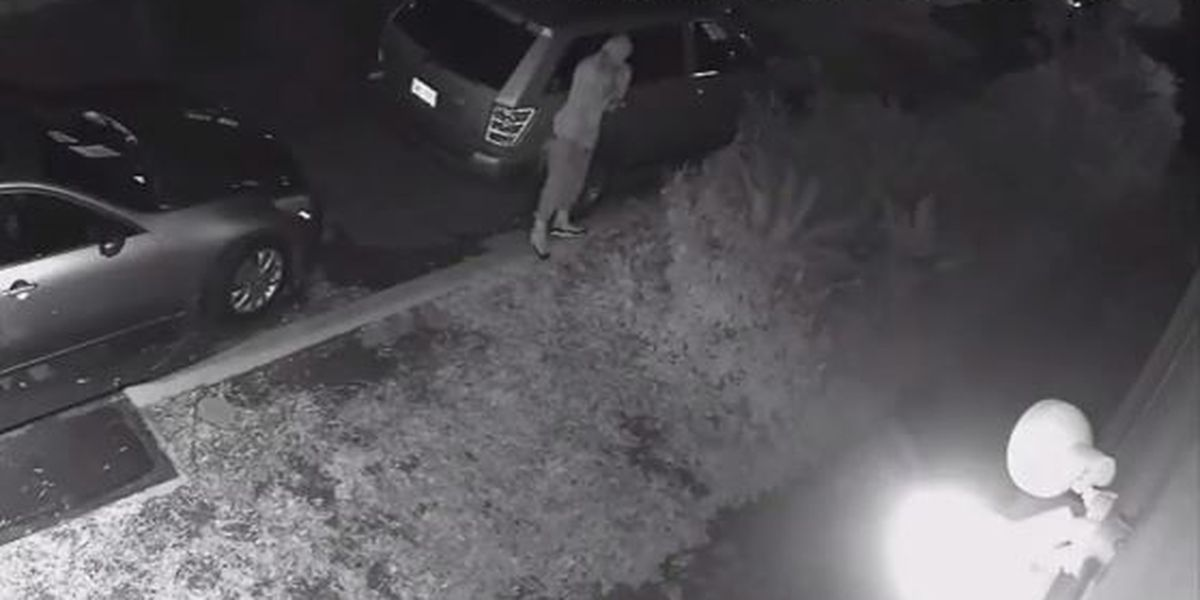 NOPD releases video of East Carrollton armed robbery suspect