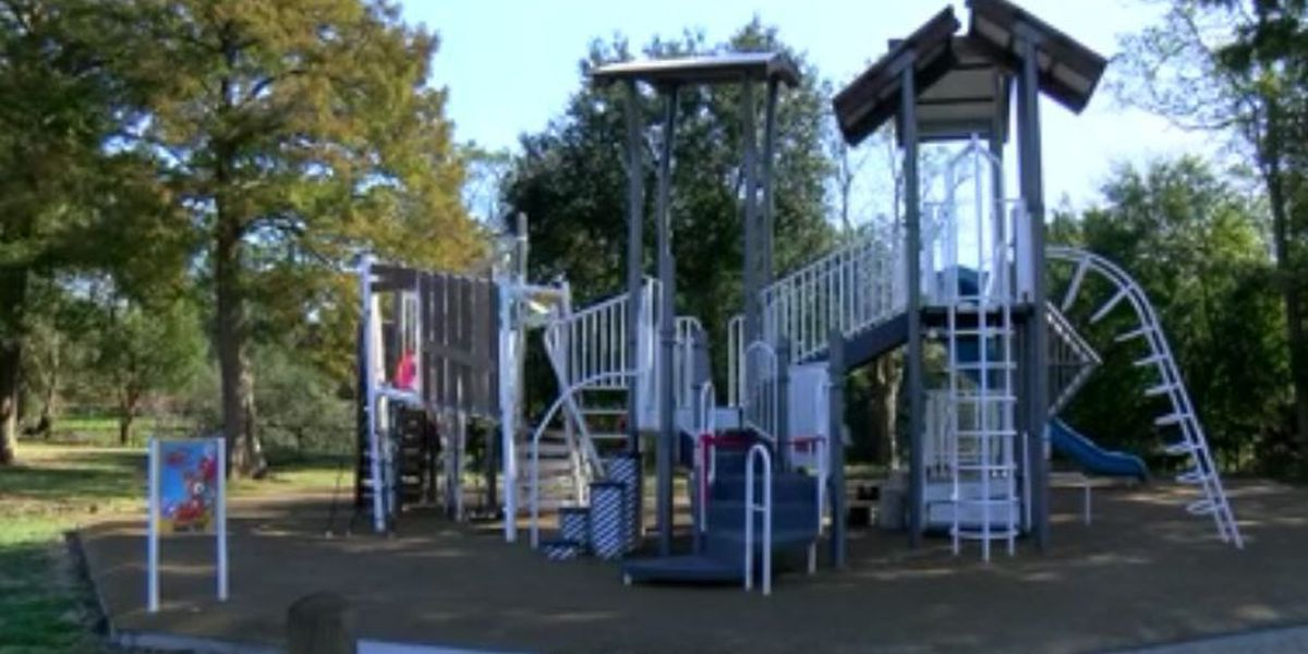 City Park debuts new attraction