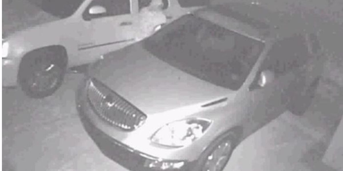 NOPD looking for two people suspected in auto burglary