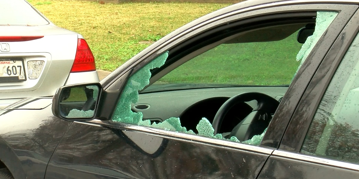 Lakeview residents frustrated after waking up to more vehicle break-ins