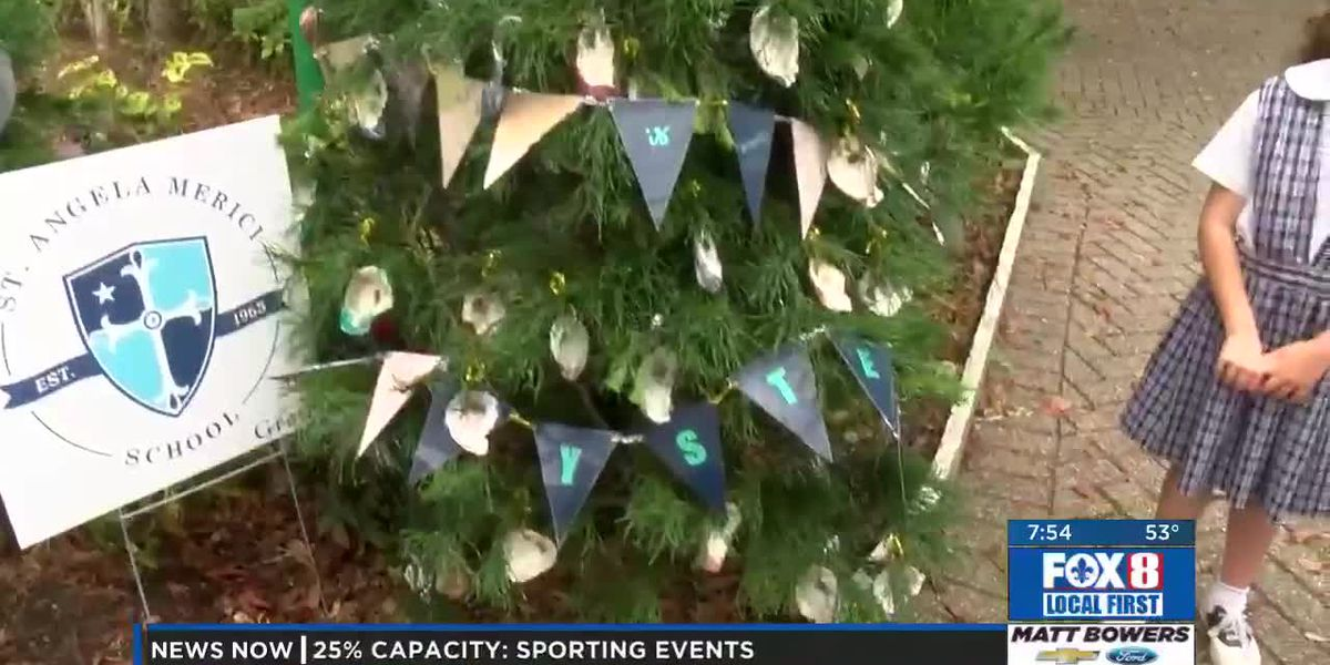 Decorated trees at Celebration in the Oaks by St. Angela Merici