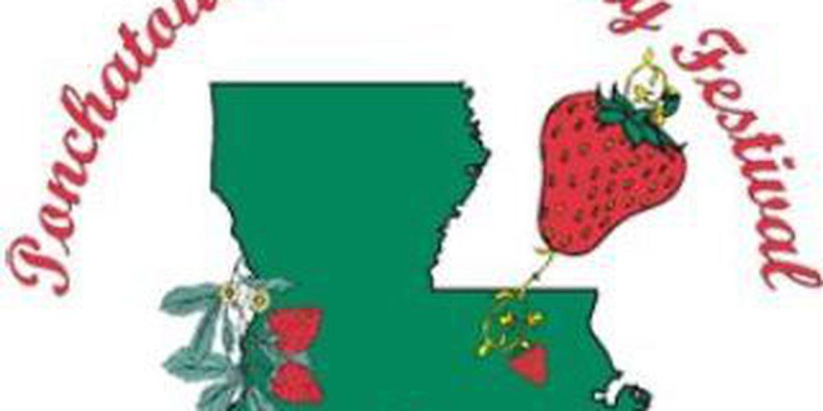 Ponchatoula Strawberry Festival canceled Saturday