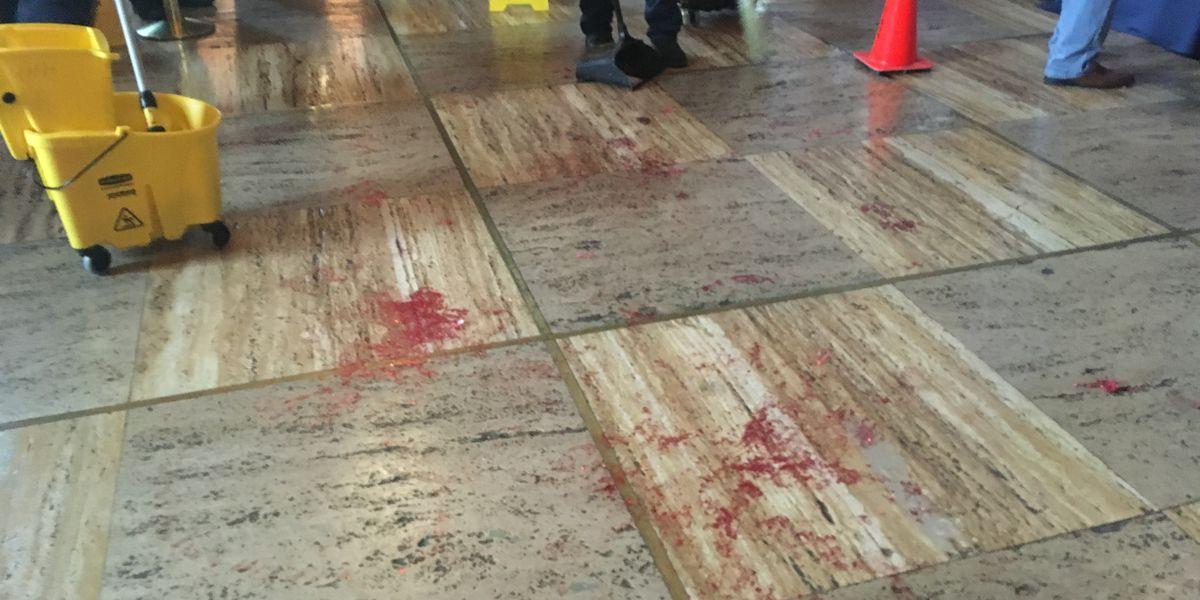 Protesters pour fake blood in Capital Building as La. lawmakers debate Fetal Heartbeat Bill